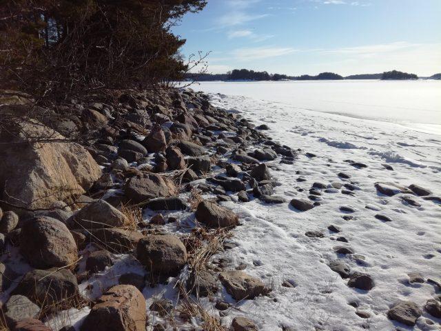 Saaristomeri kaipaa suojeluamme. Kuva: Tove Holm